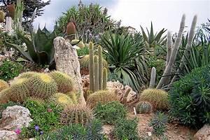 FichierEze Jardin ExotiqueJPG Wikipdia