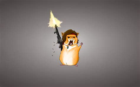 hamster guinea pigs rodent weapon rambo machine bullet red