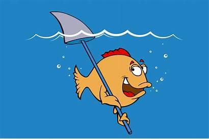Jokes Fishing Liners Funny Fin Fish Shark