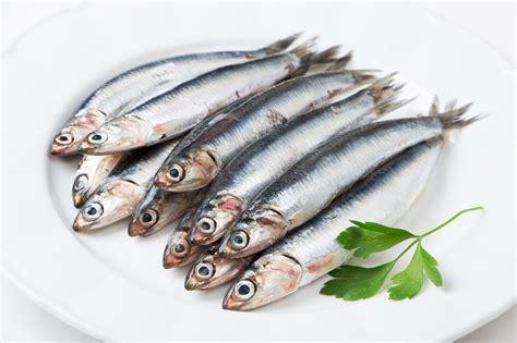 cuisiner les c鑵es frais comment bien cuisiner les anchois
