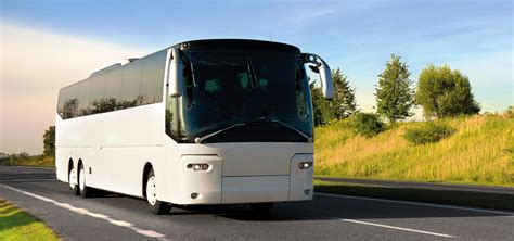 bus operators  travel agents  invest