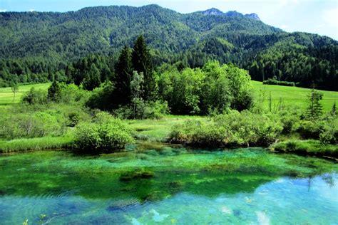 Zelenci Nature Reserve | Think Slovenia