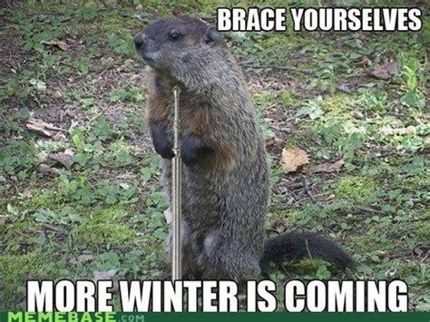 Groundhog Memes - groundhog day sillies fridayfrivolity devastate boredom