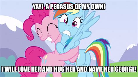 Funny Mlp Memes - my little pony friendship is magic images funny mlp meme hd wallpaper and background photos