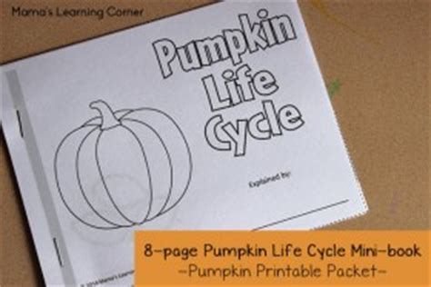 pumpkin life cycle printable packet mamas learning corner