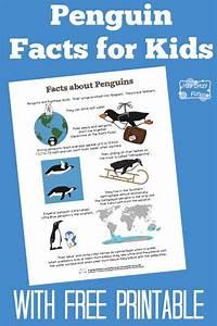 82 Best Antarctica For Kids Images On Pinterest