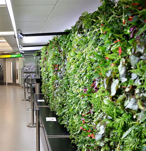 Used In Vertical Gardens by Airport Installs Wall Of 1 680 Plants To Help