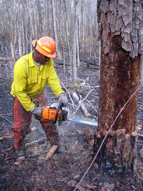 wildland fire hand tools photo gallery  national