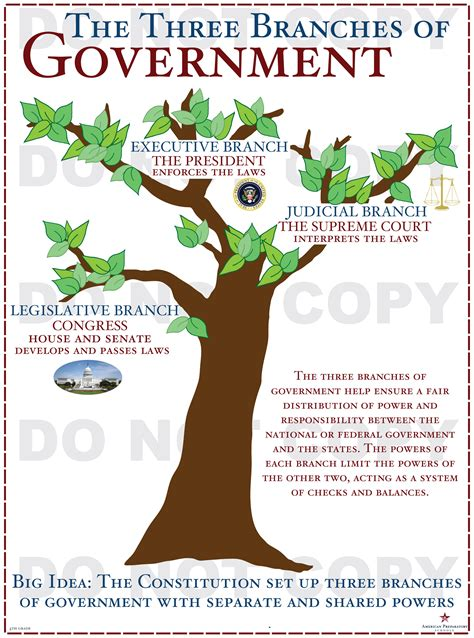 Branches Of Government  4th Grade