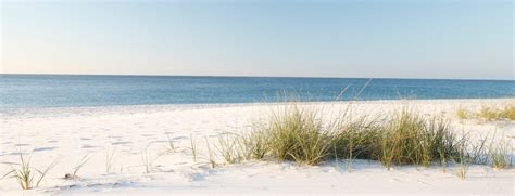 wallpaper for dining room best beaches in alabama gulf shores orange