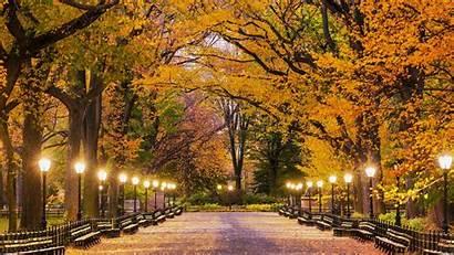 Central Park Autumn York Autunno Sfondo Parco