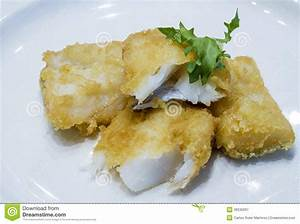 Fried Fish Fillet Royalty Free Stock Photography - Image ...