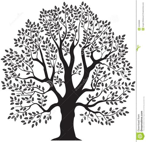 oak tree clipart black and white black and white oak tree clipart 101 clip