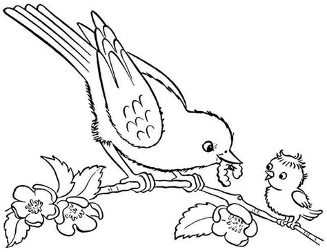 bird coloring pages for preschoolers 6 best images of printable bird coloring pages preschool 711