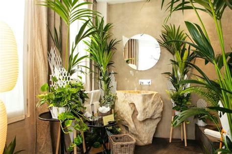 plantes dépolluantes chambre à coucher les plantes vertes dans la chambre annikapanika