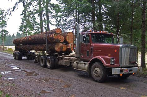 loggers death ruled accidental  released texarkana