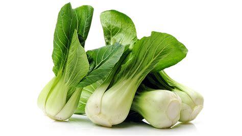 pak choi farmers market slaw  tryon daily bulletin