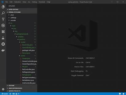 Java Visual Studio Code Coding Microsoft Package