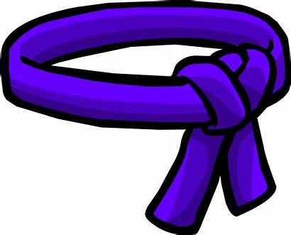 Ninja Belt Penguin Purple Clipart Icon Brown