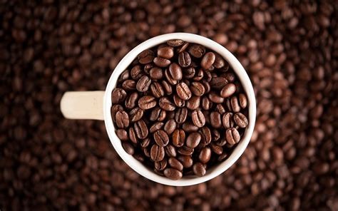 Is Coffee Good Or Bad For You? Coffee Table Book Law Zodiac Jfk Scrub Without Oil Books For Men Of Photos Recommendations Chanel Uk