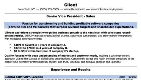 Best Resume Building Companies by Resume Builder Companies Best Resumes