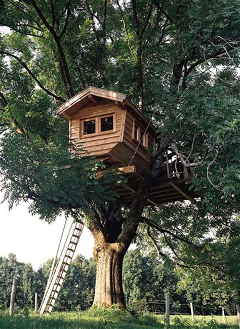 Baumhäuser… Mehr Als Ein Abenteuerspielplatz  Tiny Houses
