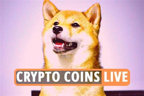 Bitcoin latest news – Cryptocurrency Shiba Inu now rivals ...
