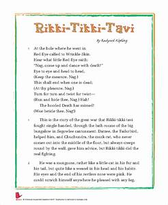 Rikki tikki tavi essay - rikki tikki tavi essay conclusion examples ...