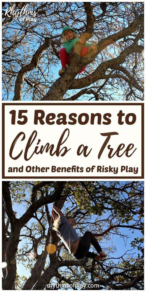 reasons  climb  tree   benefits  risky
