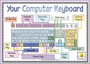 Keyboard  End  Pgup  Pgdn  Insert  Del Area Above The