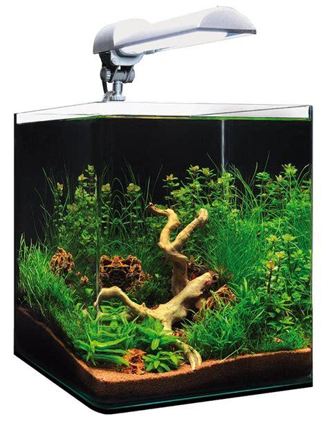 bulleur aquarium 20 litres 28 images onze malawi cichliden members tanks page 3 practical
