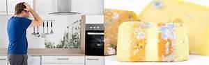 Schimmel In Der Küche : schimmelpilze in der k che schimmel vorbeugen und entfernen ~ Yasmunasinghe.com Haus und Dekorationen