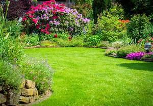 Pflanzen Pflegeleicht Garten : rhododendron und azalee ~ Lizthompson.info Haus und Dekorationen