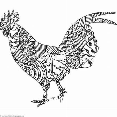 Coloring Chicken Zentangle Pages Adult Getcoloringpages Colouring