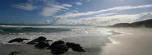 Blitz Reisen Südafrika : s dafrika iguana reisen ~ Kayakingforconservation.com Haus und Dekorationen