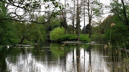 Prehistoric Pond Background Backgrounds Nature Cave