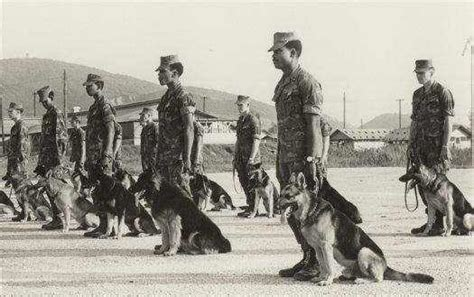 No Military Working Dog Left Behind Topeka Shawnee County Public Li Ry