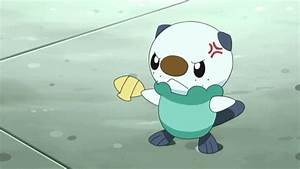 Pokemon Oshawott GIFs - Get the best GIF on GIPHY