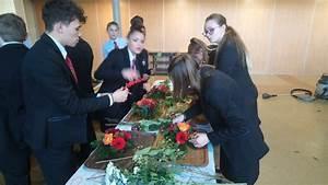 Lion Service Dijon : photos des activites realisees par les eleves cours ~ Premium-room.com Idées de Décoration