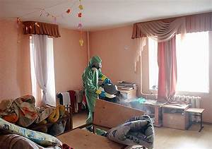 Angebrannter Geruch Wohnung : wie man bettwanzen in einer wohnung loswird wir schlie en bettparasiten f r immer ab ~ Bigdaddyawards.com Haus und Dekorationen
