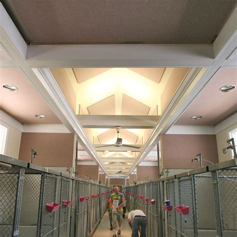mill kennel acoustical solutions
