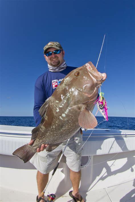 grouper florida fishing keys