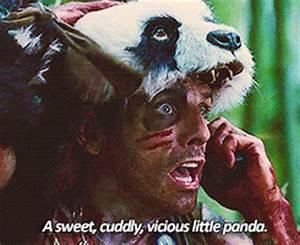 Pop culture panda GIFs   EW.com