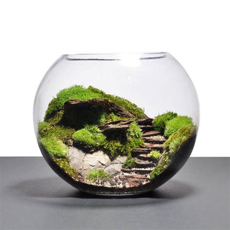 Mini Terrarium Glas by Terrarium 14 Best Places To Find Quot Gardens Quot In