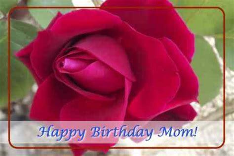 happy birthday mom  rose   mom dad ecards
