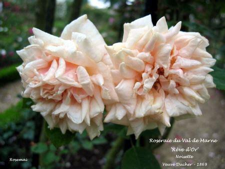 bureau de poste l hay les roses la roseraie du val de marne à l 39 hay les roses la plus