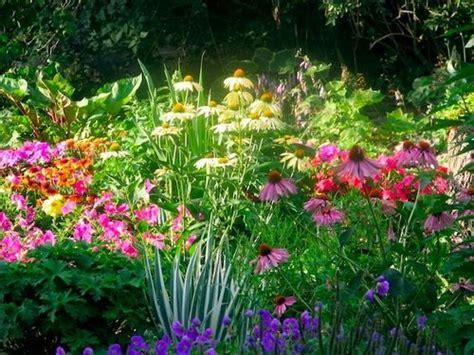 summer flower garden choose summer flowers for your garden www coolgarden me
