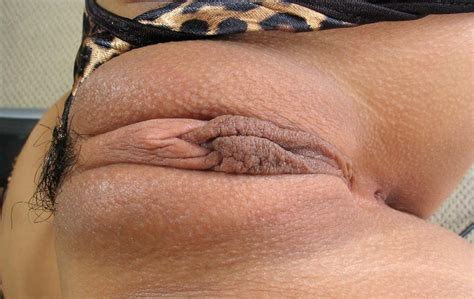Fat Cameltoe Pussy 192266 Nipples And Meaty Pussy