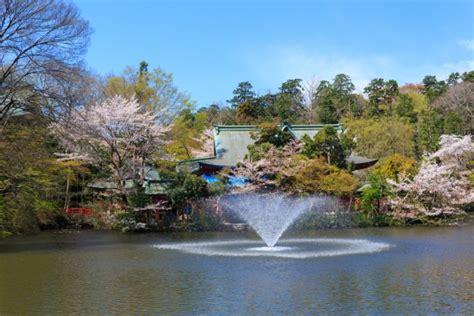 10 breathtakingly romantic attractions in tokyo