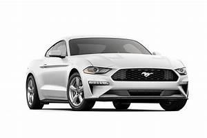 2020 Ford® Mustang EcoBoost Fastback Sports Car | Model Details | Ford.com
